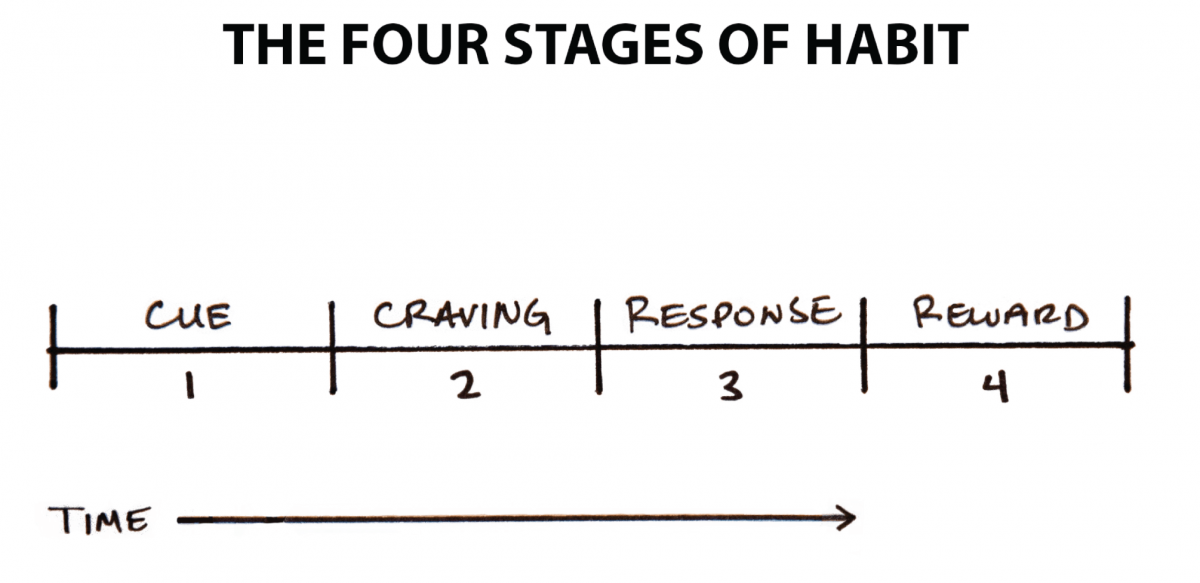 Four Stages of Habit Formation